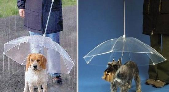 Креативные зонтики