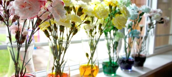 12 творческих дел для весны